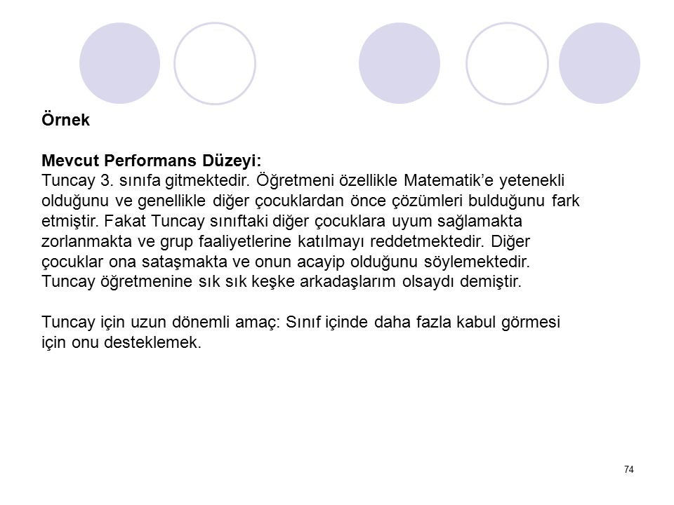 Örnek Mevcut Performans Düzeyi: