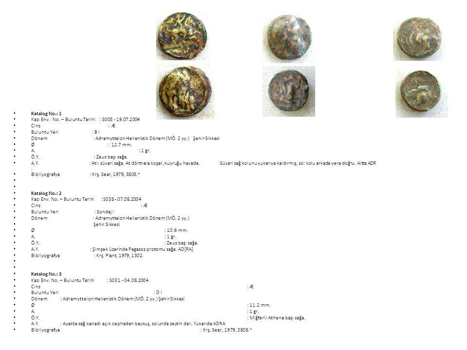 Katalog No.: 1 Kazı Env. No. – Buluntu Tarihi : S003 - 19.07.2004. Cins : Æ.