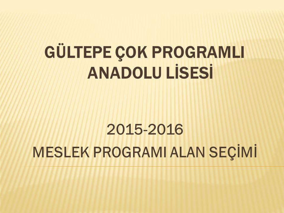 GÜLTEPE ÇOK PROGRAMLI ANADOLU LİSESİ