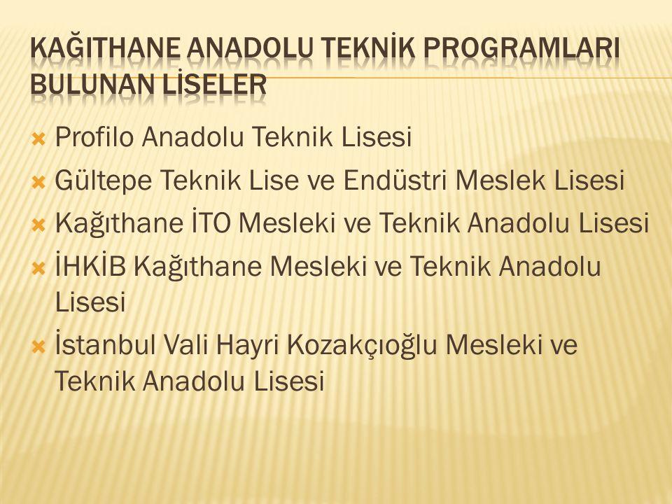 KağITHANE Anadolu Teknİk programlArI BULUNAN lİSELER