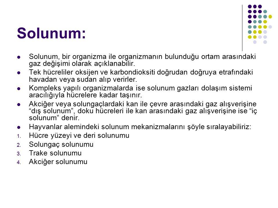 Solunum: Solunum, bir organizma ile organizmanın bulunduğu ortam arasındaki gaz değişimi olarak açıklanabilir.