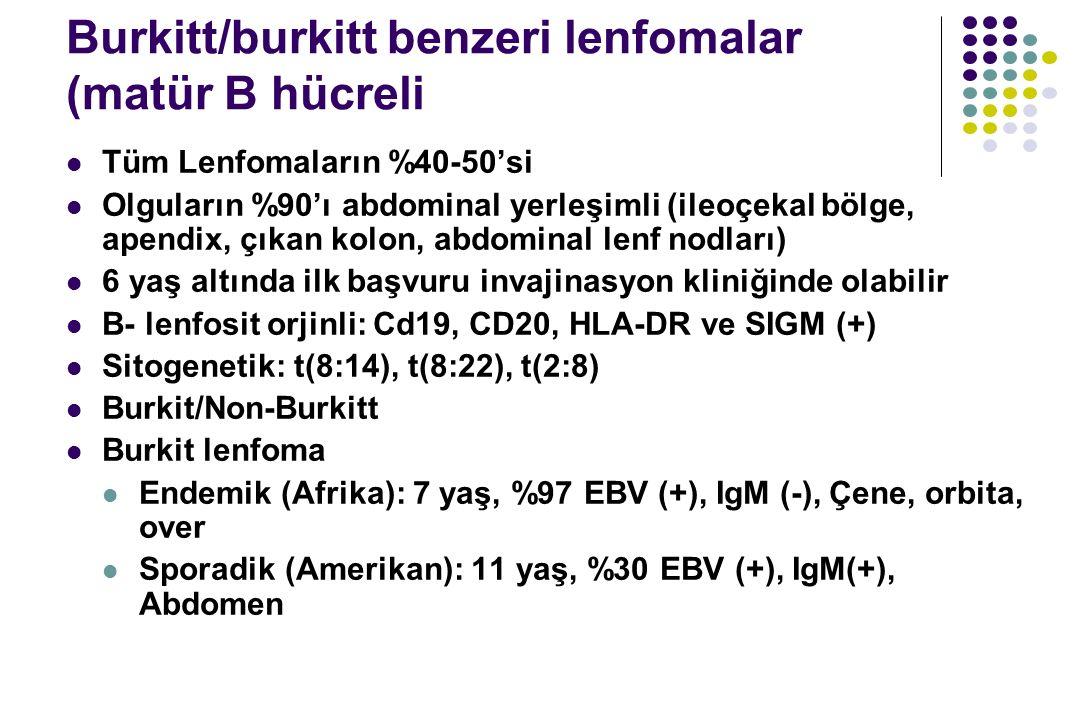 Burkitt/burkitt benzeri lenfomalar (matür B hücreli