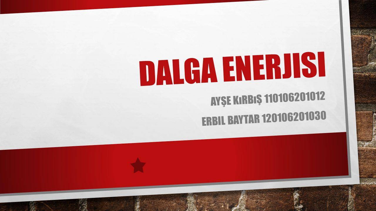 Ayşe kırbış 110106201012 Erbil baytar 120106201030