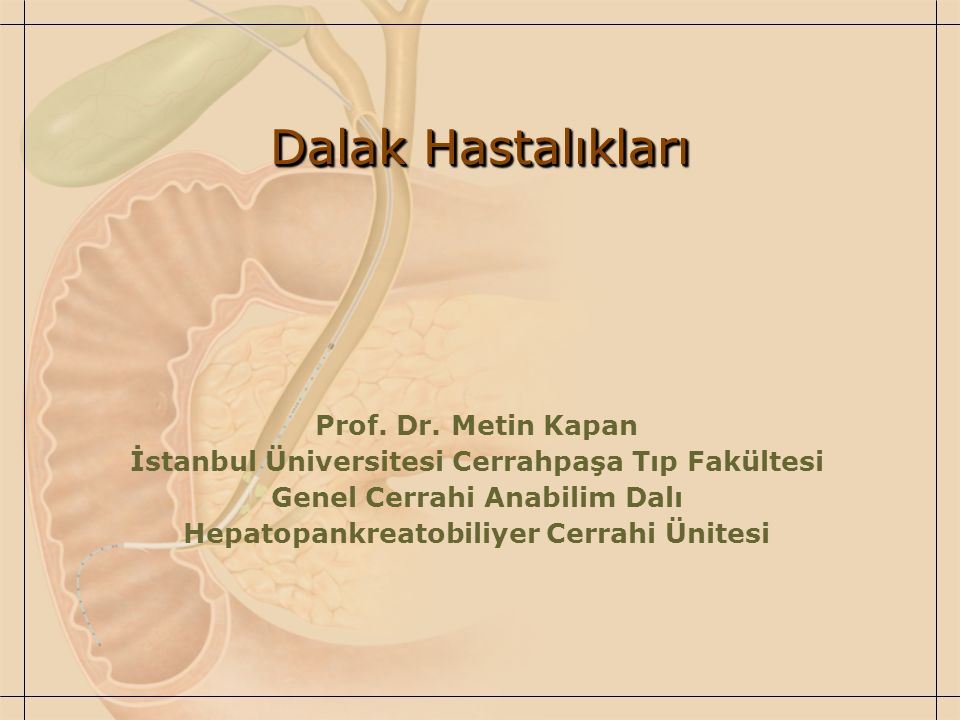 Dalak Hastalıkları Prof. Dr. Metin Kapan