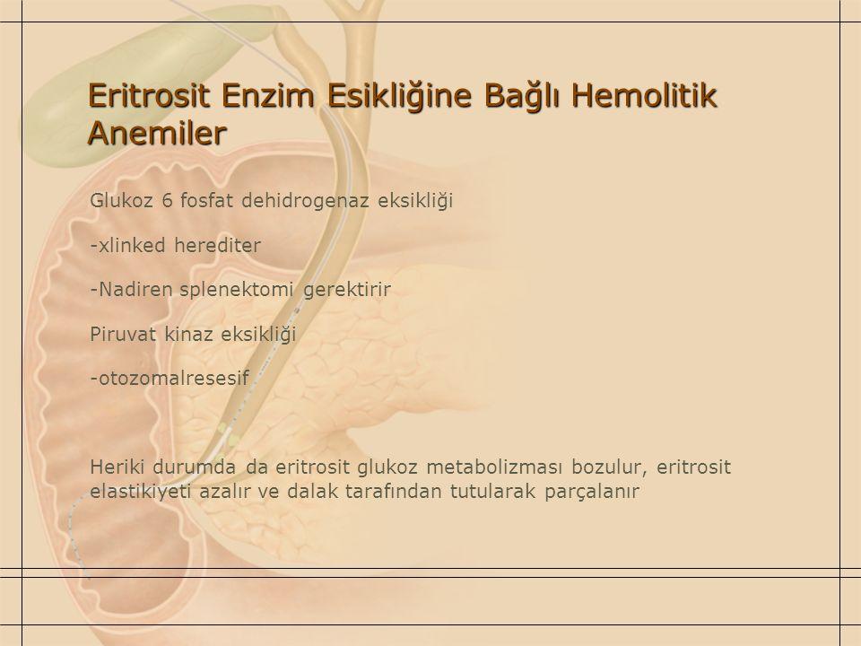 Eritrosit Enzim Esikliğine Bağlı Hemolitik Anemiler