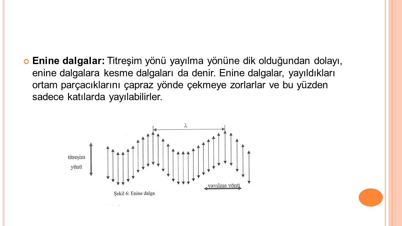 Enine dalgalar: Titreşim yönü yayılma yönüne dik olduğundan dolayı, enine dalgalara kesme dalgaları da denir.