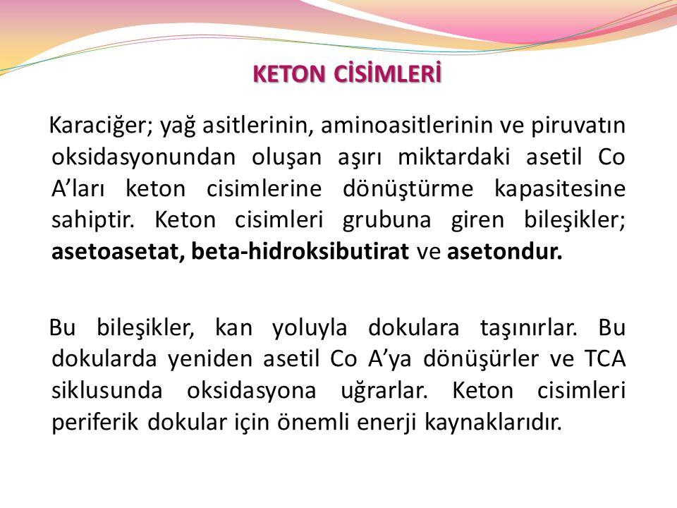 KETON CİSİMLERİ