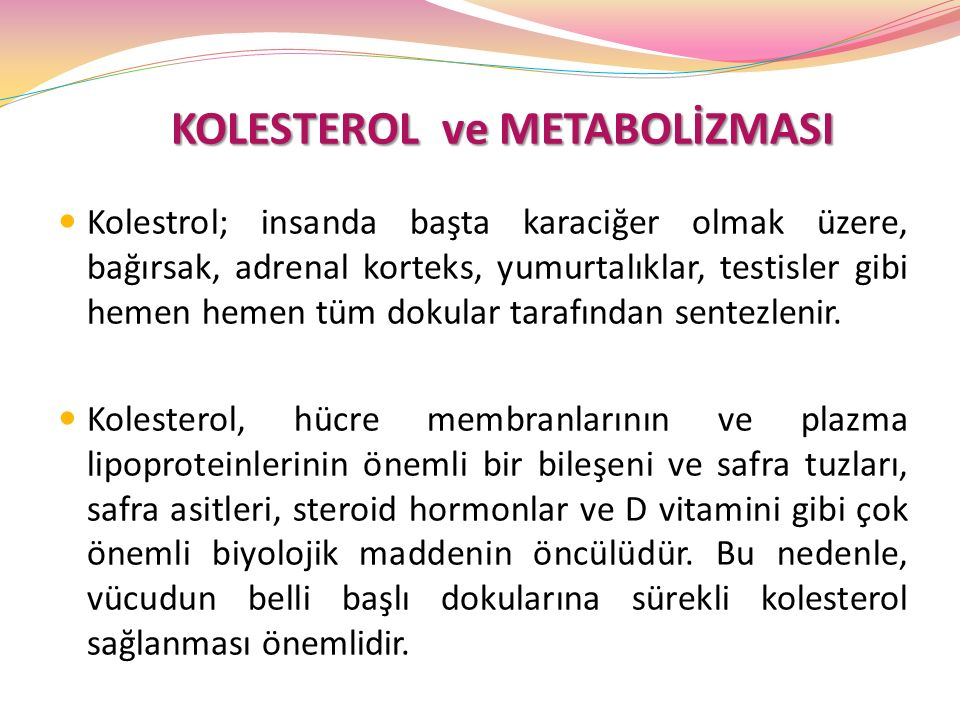 KOLESTEROL ve METABOLİZMASI