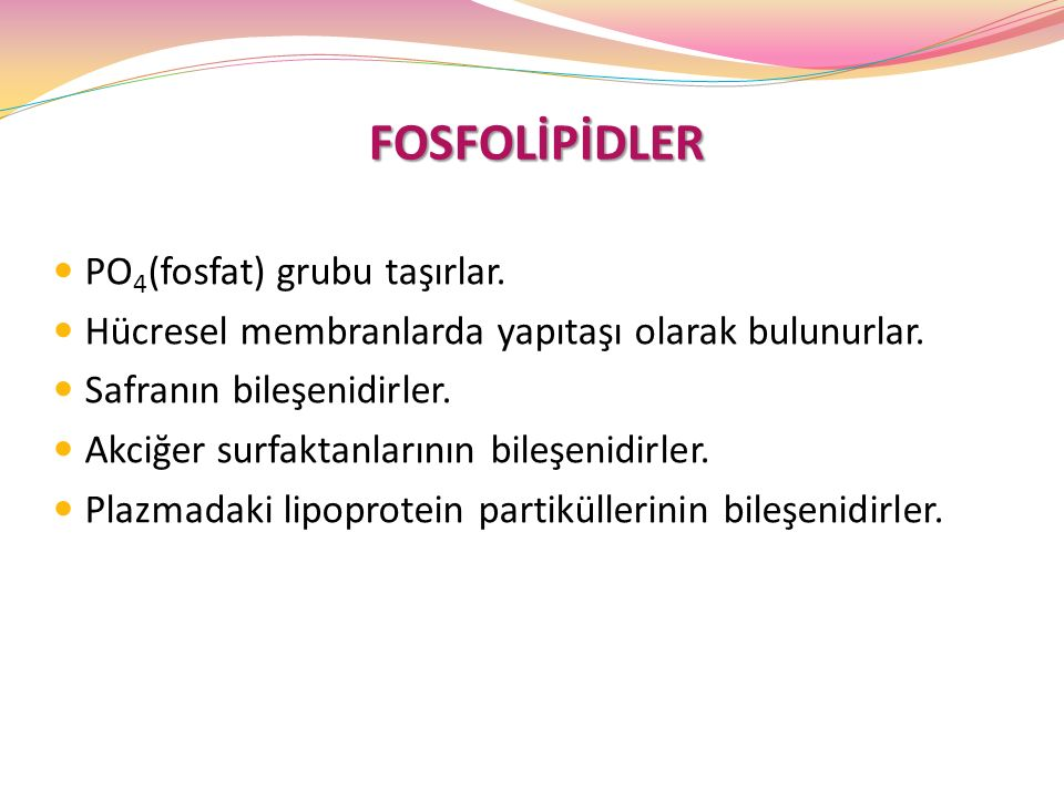 FOSFOLİPİDLER PO4(fosfat) grubu taşırlar.