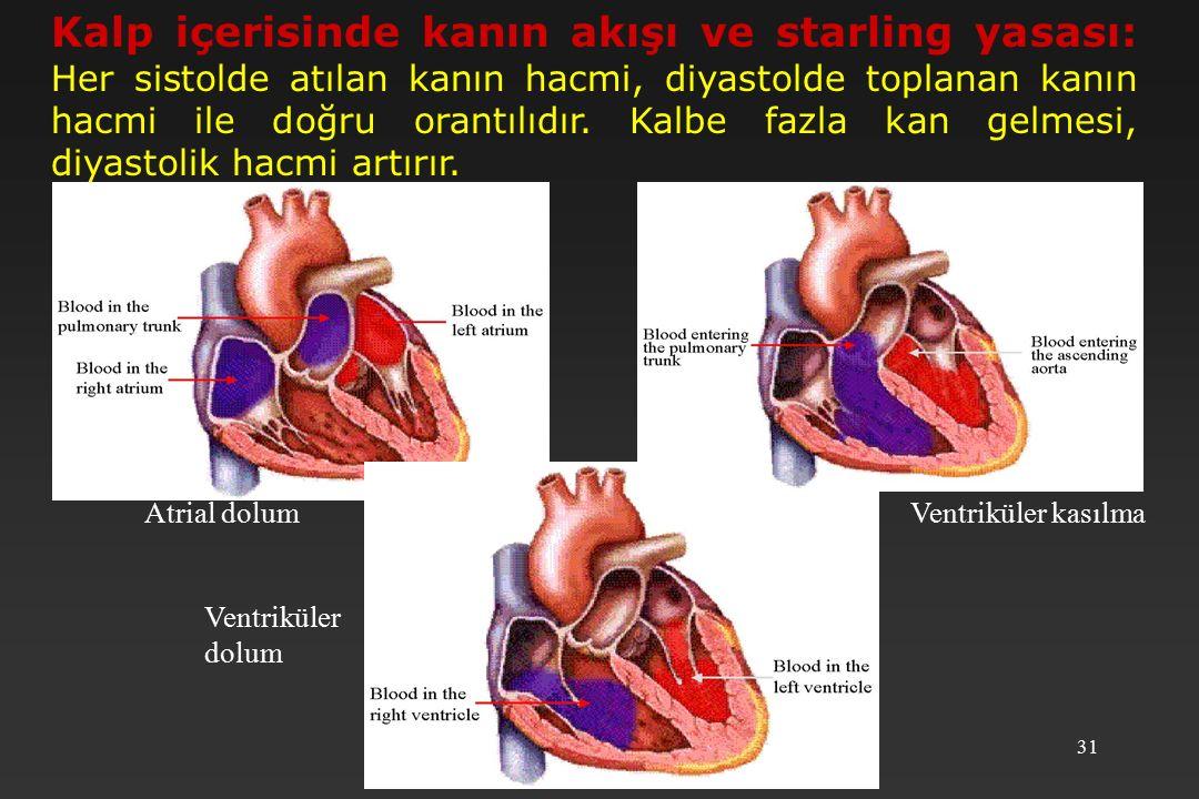 Kalp içerisinde kanın akışı ve starling yasası: Her sistolde atılan kanın hacmi, diyastolde toplanan kanın hacmi ile doğru orantılıdır. Kalbe fazla kan gelmesi, diyastolik hacmi artırır.