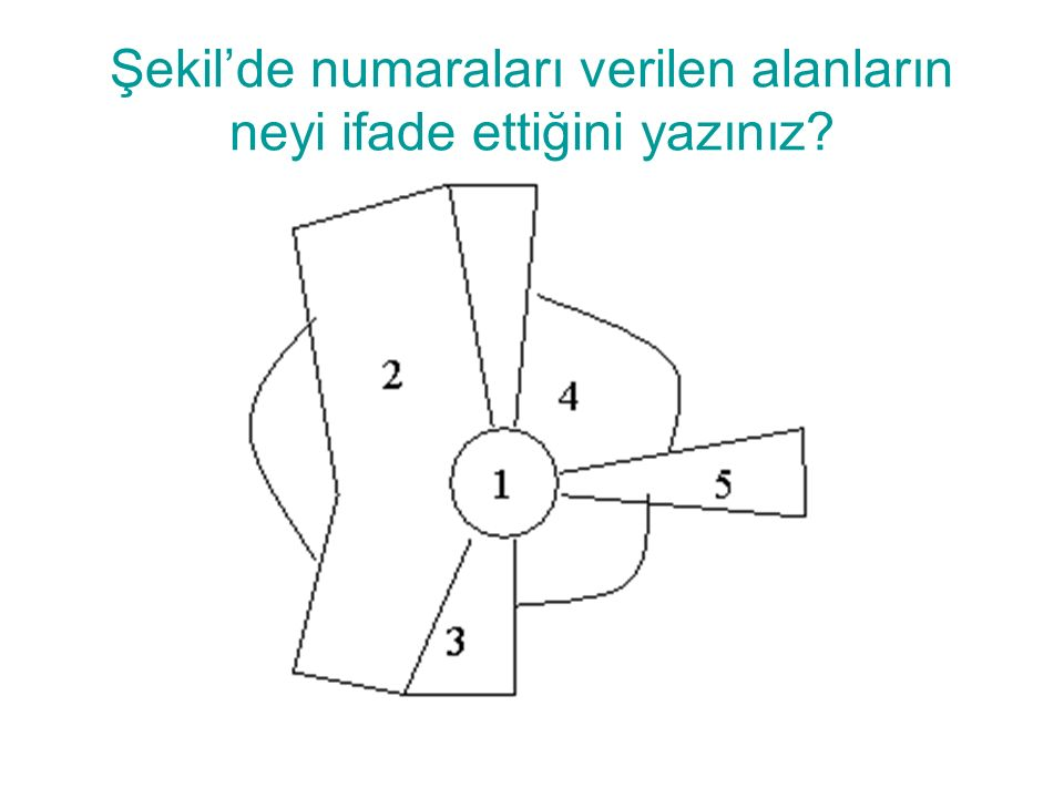 Şekil'de numaraları verilen alanların neyi ifade ettiğini yazınız