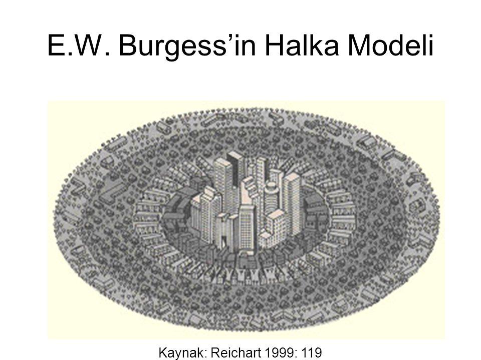 E.W. Burgess'in Halka Modeli