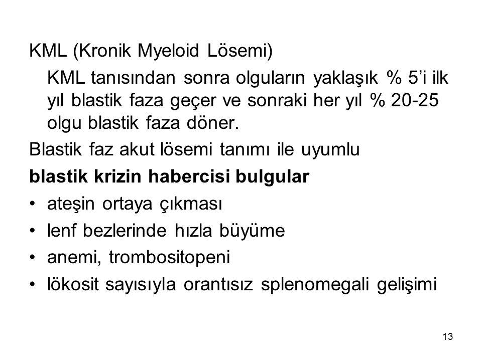 KML (Kronik Myeloid Lösemi)