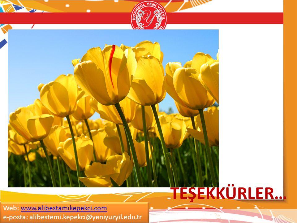 TEŞEKKÜRLER… Web: www.alibestamikepekci.com e-posta: alibestemi.kepekci@yeniyuzyil.edu.tr