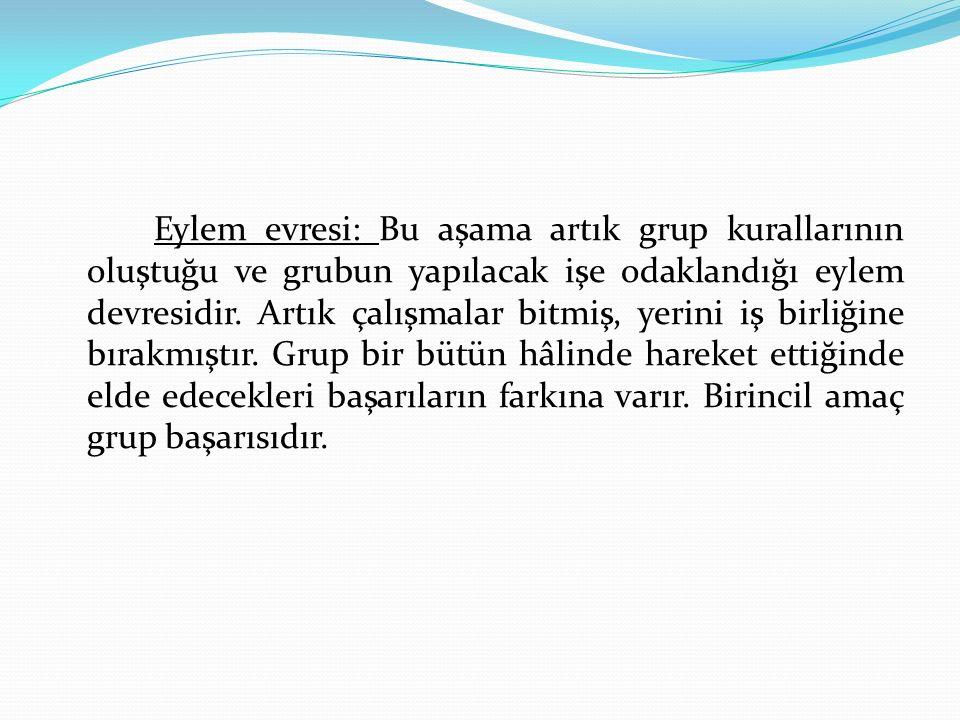 Eylem evresi: Bu aşama artık grup kurallarının oluştuğu ve grubun yapılacak işe odaklandığı eylem devresidir.