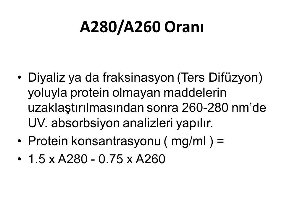A280/A260 Oranı