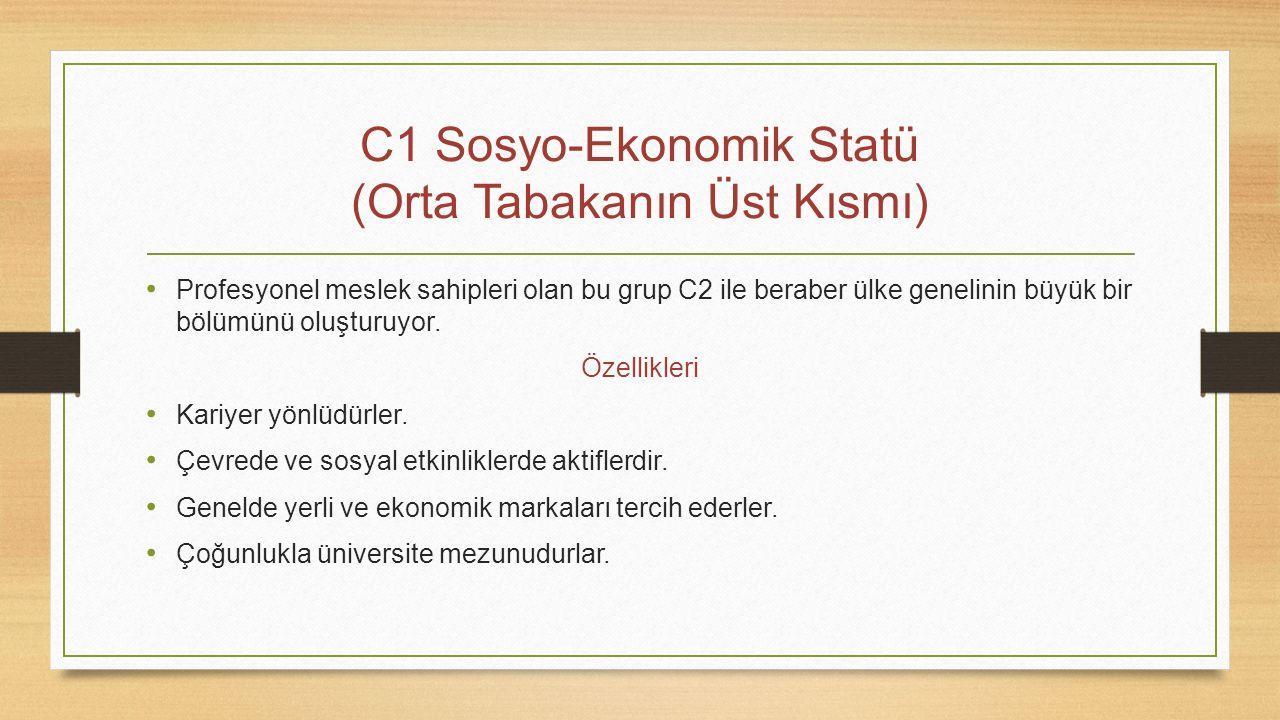 C1 Sosyo-Ekonomik Statü (Orta Tabakanın Üst Kısmı)