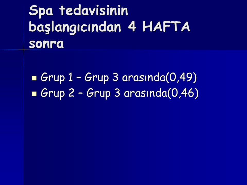 Spa tedavisinin başlangıcından 4 HAFTA sonra
