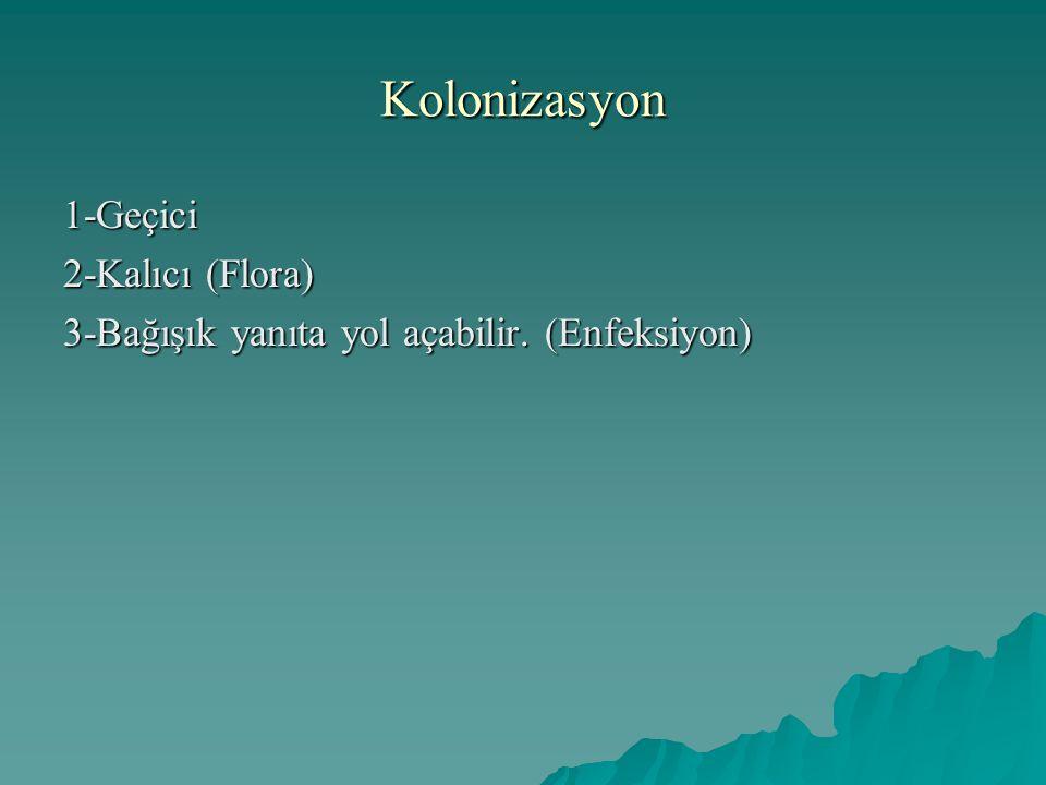 Kolonizasyon 1-Geçici 2-Kalıcı (Flora)