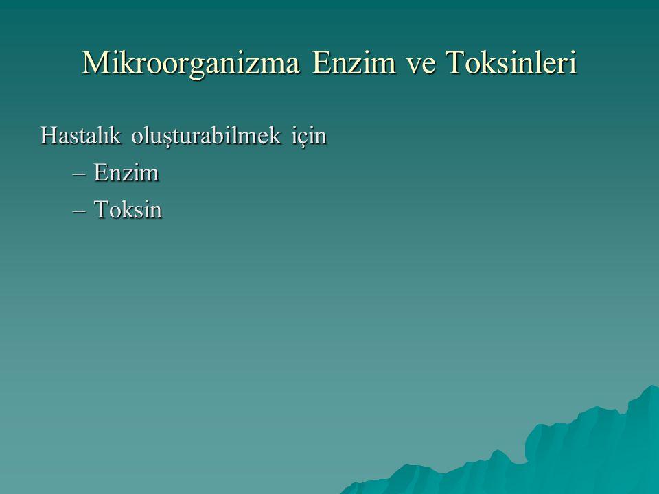 Mikroorganizma Enzim ve Toksinleri