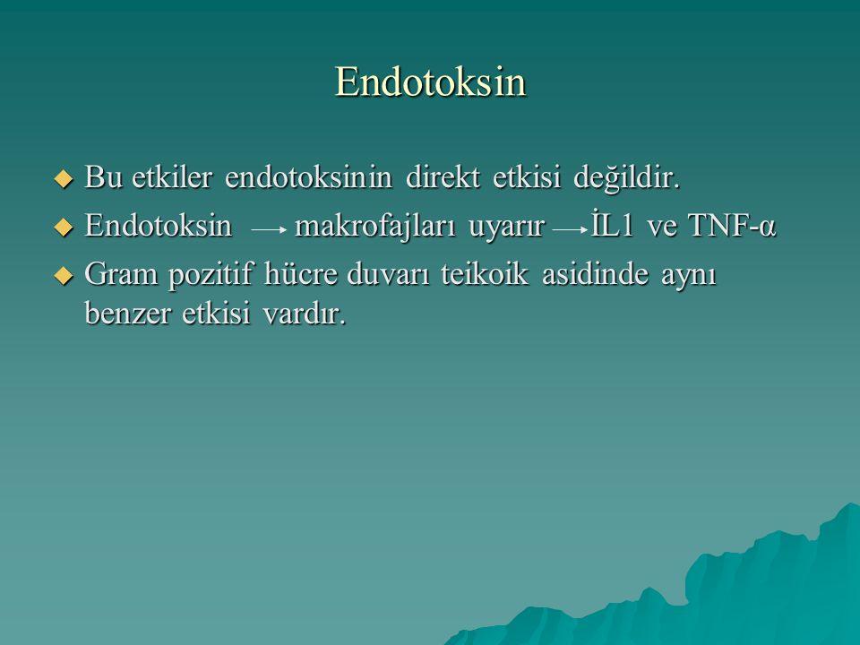 Endotoksin Bu etkiler endotoksinin direkt etkisi değildir.