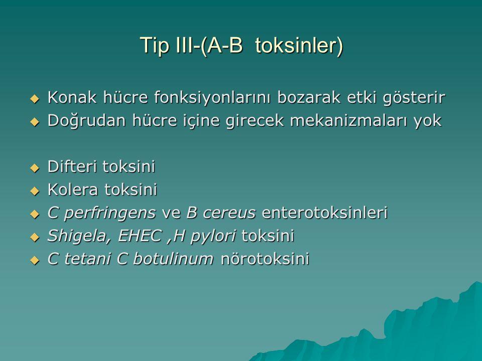 Tip III-(A-B toksinler)