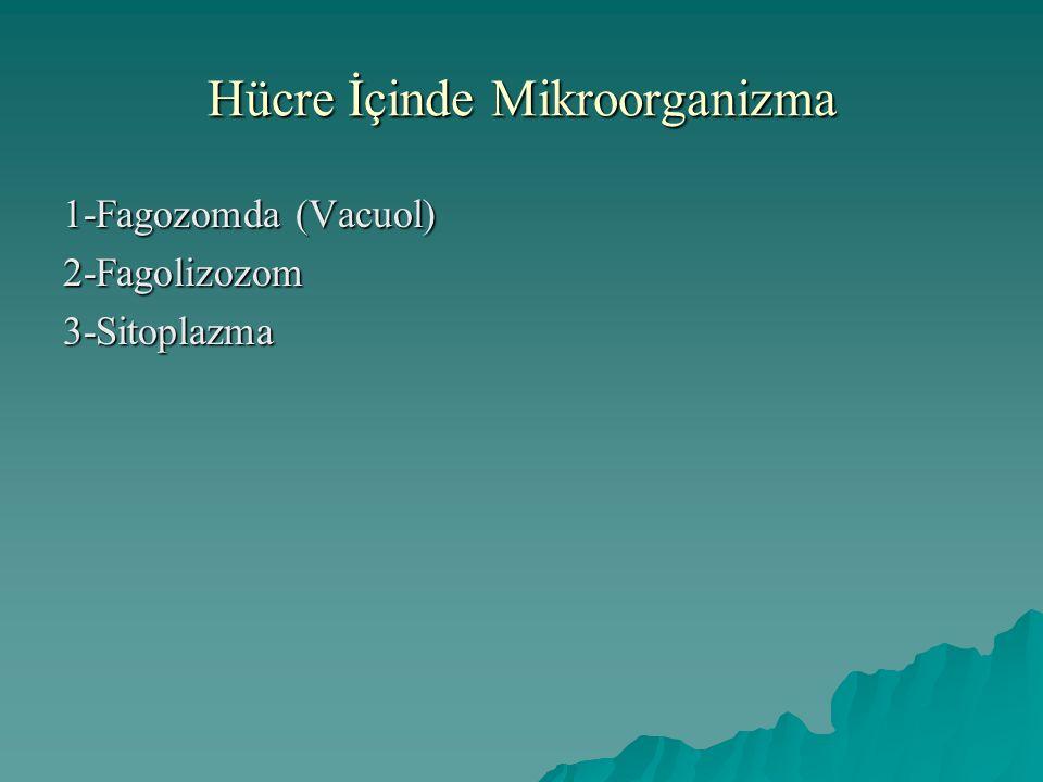 Hücre İçinde Mikroorganizma