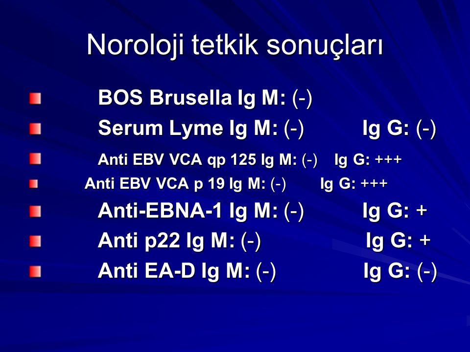 Noroloji tetkik sonuçları