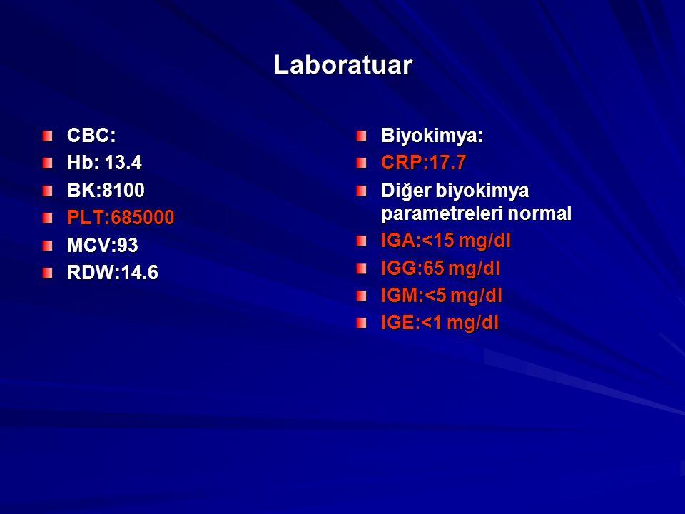 Laboratuar CBC: Hb: 13.4 BK:8100 PLT:685000 MCV:93 RDW:14.6 Biyokimya:
