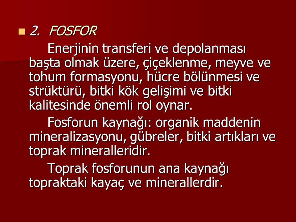 2. FOSFOR
