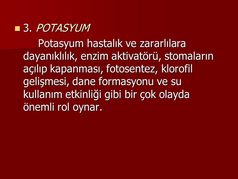 3. POTASYUM