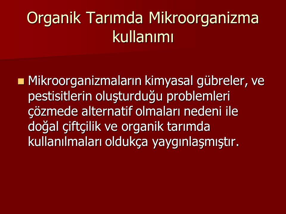 Organik Tarımda Mikroorganizma kullanımı