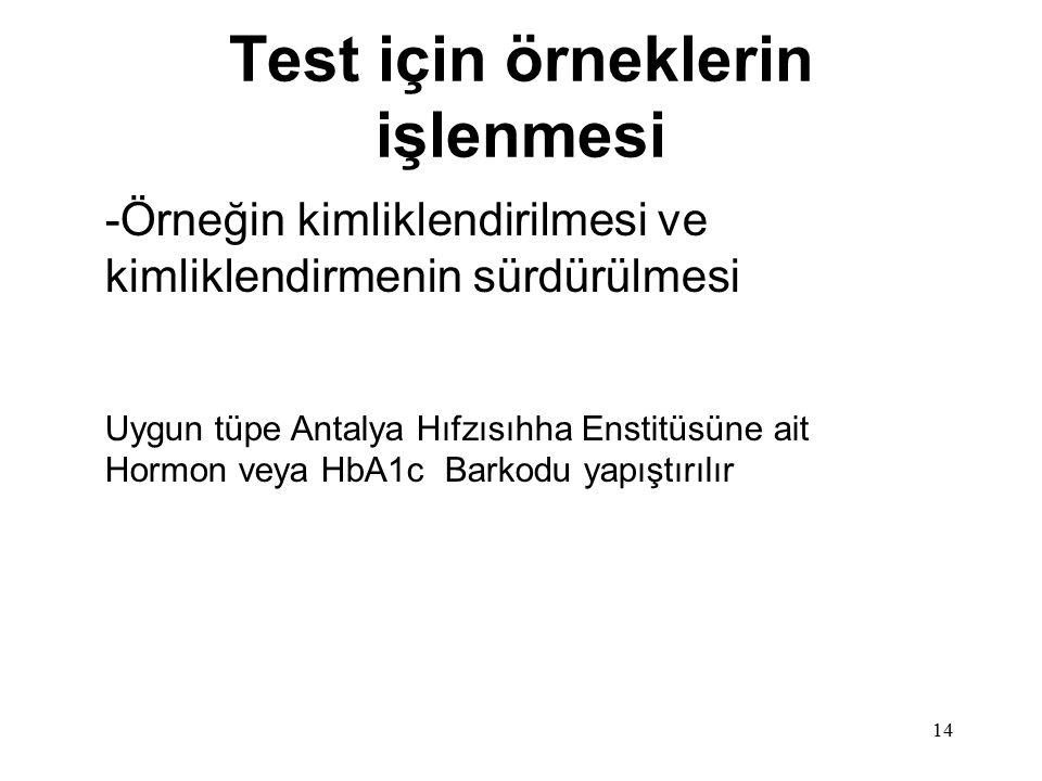 Test için örneklerin işlenmesi