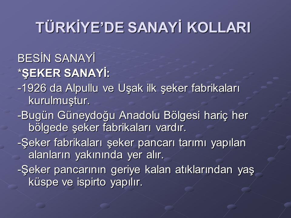 TÜRKİYE'DE SANAYİ KOLLARI