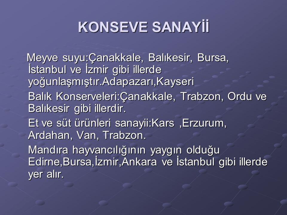 KONSEVE SANAYİİ Meyve suyu:Çanakkale, Balıkesir, Bursa, İstanbul ve İzmir gibi illerde yoğunlaşmıştır.Adapazarı,Kayseri.