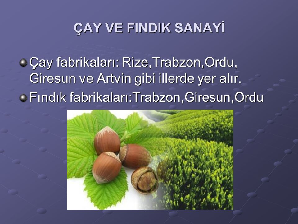 ÇAY VE FINDIK SANAYİ Çay fabrikaları: Rize,Trabzon,Ordu, Giresun ve Artvin gibi illerde yer alır.