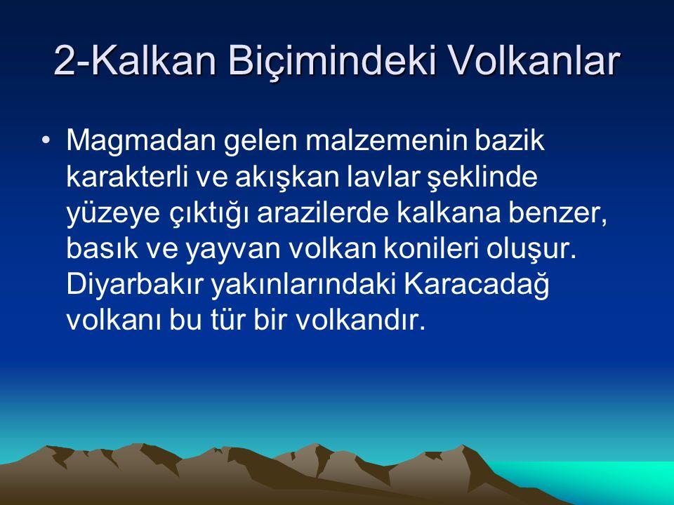 2-Kalkan Biçimindeki Volkanlar