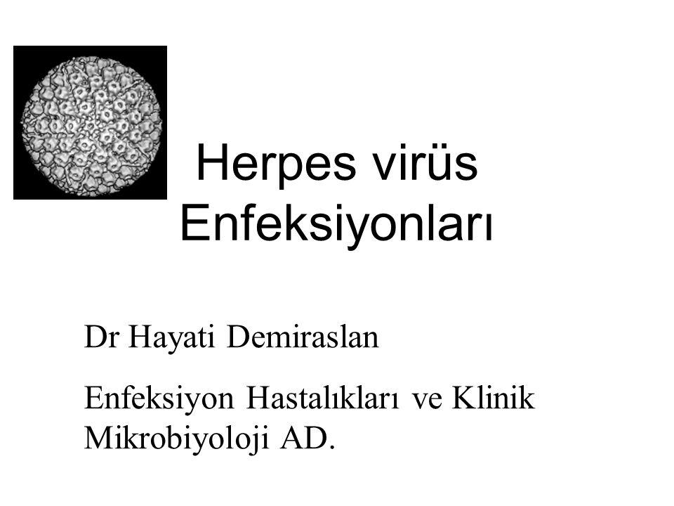 Herpes virüs Enfeksiyonları