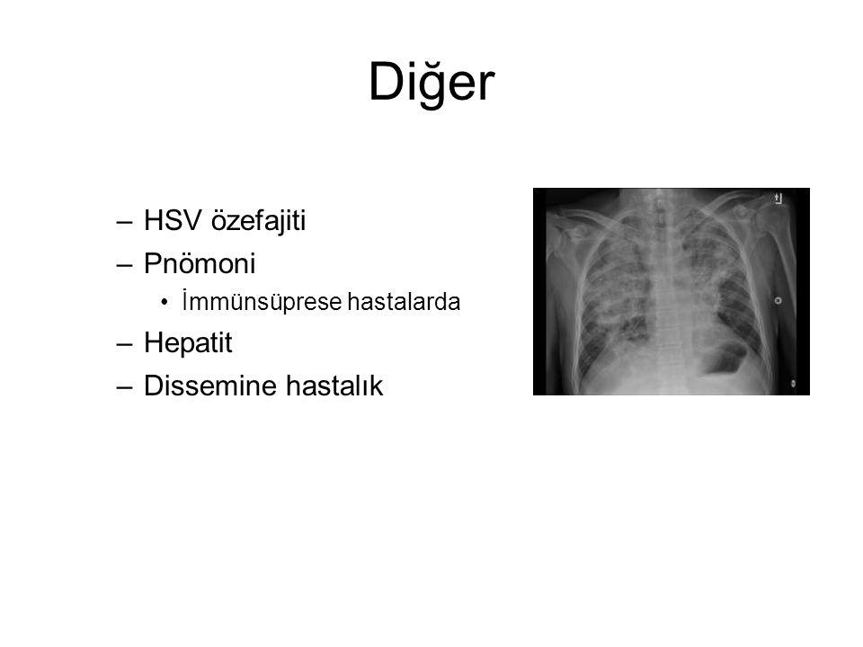 Diğer HSV özefajiti Pnömoni Hepatit Dissemine hastalık