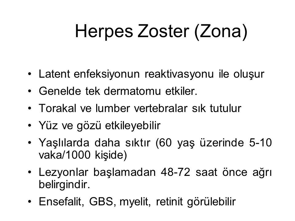 Herpes Zoster (Zona) Latent enfeksiyonun reaktivasyonu ile oluşur