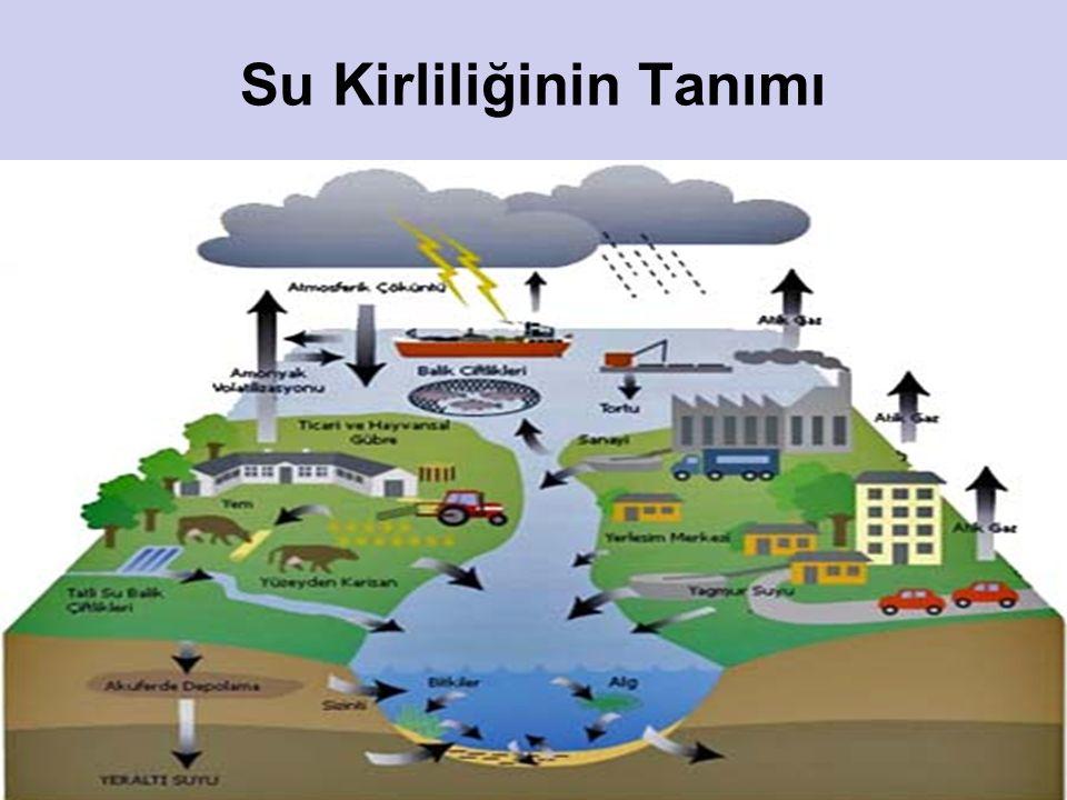 Su Kirliliğinin Tanımı