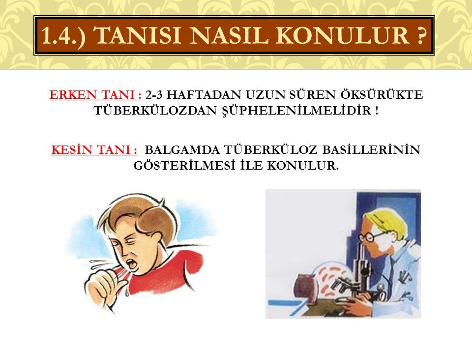 1.4.) TANISI NASIL KONULUR
