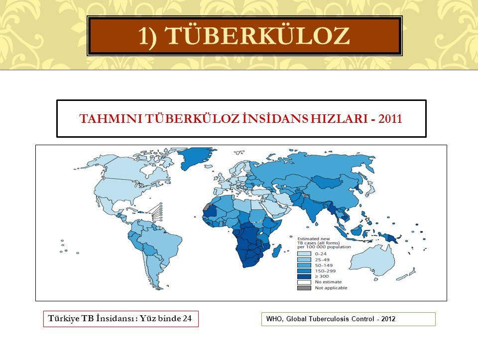 Tahmini Tüberküloz İnsİdans HIzlarI - 2011