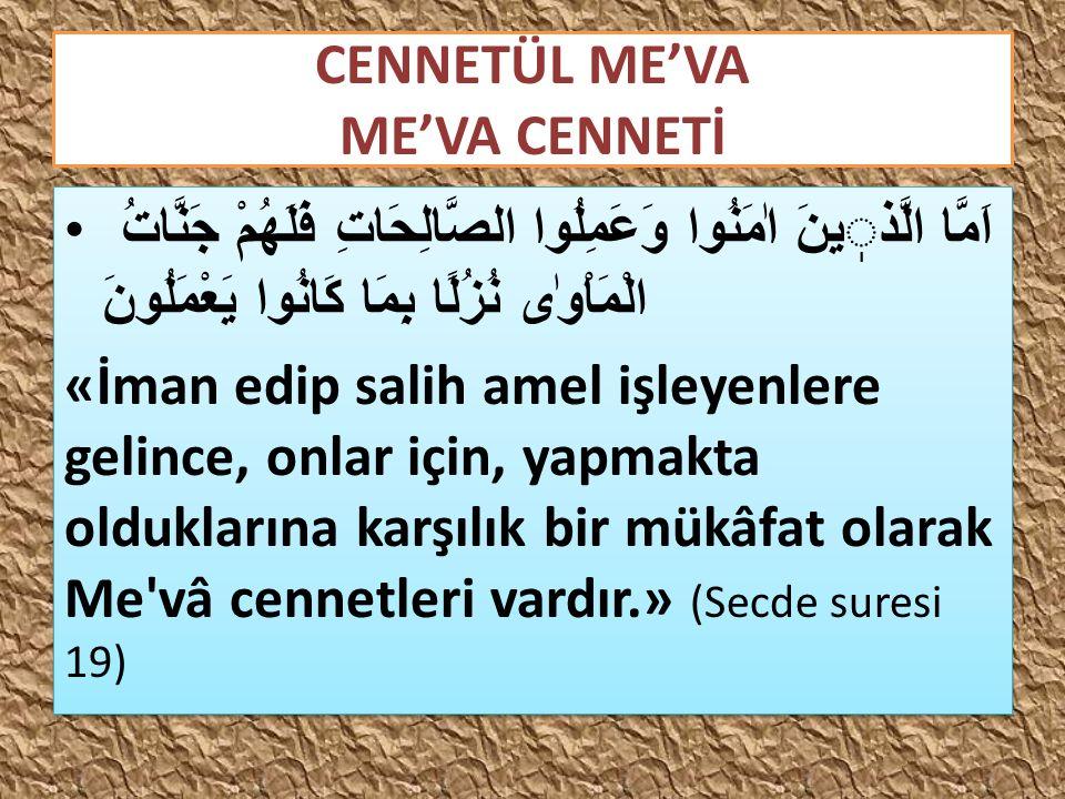 CENNETÜL ME'VA ME'VA CENNETİ