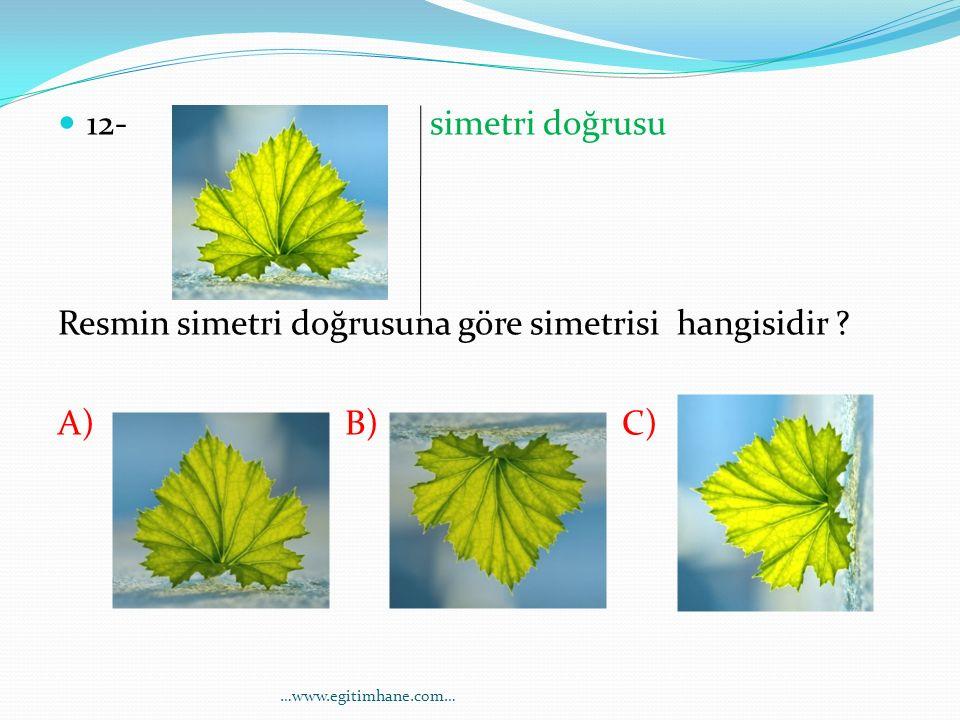 Resmin simetri doğrusuna göre simetrisi hangisidir A) B) C)
