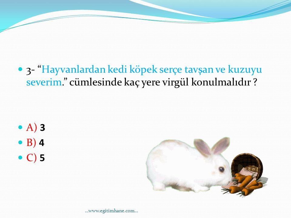 3- Hayvanlardan kedi köpek serçe tavşan ve kuzuyu severim
