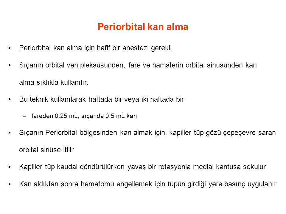 Periorbital kan alma Periorbital kan alma için hafif bir anestezi gerekli.