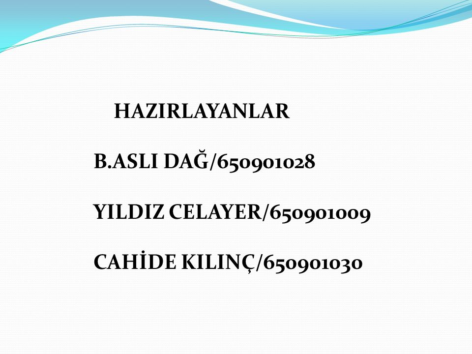 HAZIRLAYANLAR B.ASLI DAĞ/650901028 YILDIZ CELAYER/650901009 CAHİDE KILINÇ/650901030