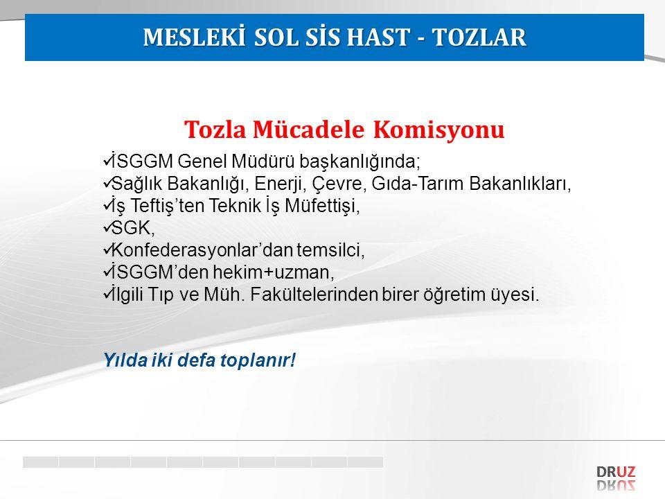 MESLEKİ SOL SİS HAST - TOZLAR Tozla Mücadele Komisyonu