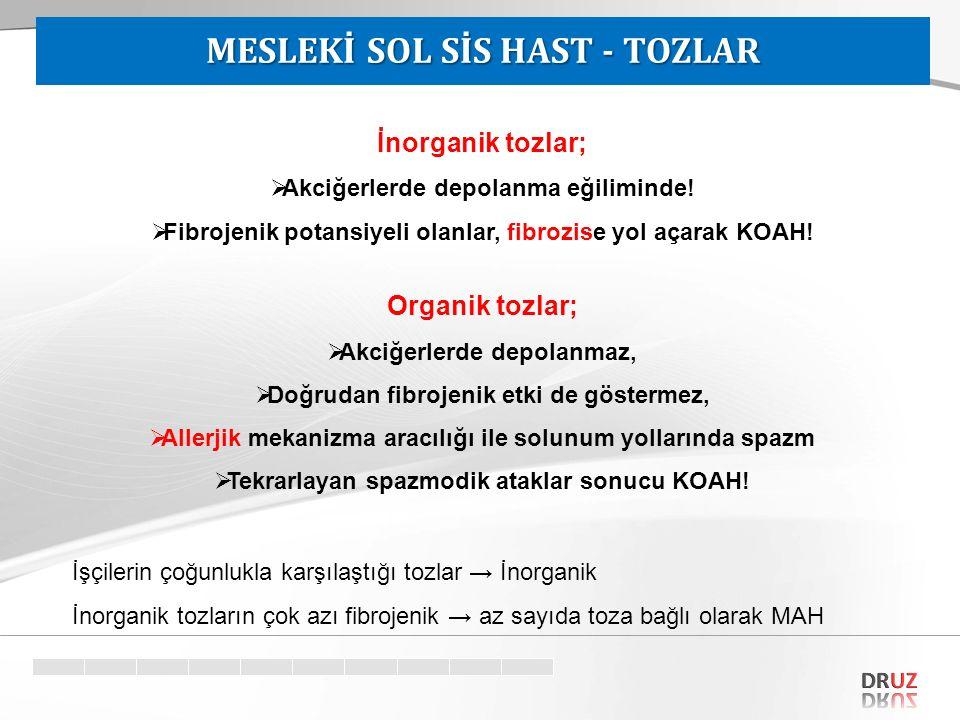 MESLEKİ SOL SİS HAST - TOZLAR